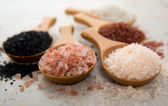 Assortment of Mineral Rich Sea Salts — Stock Photo