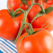 Fresh Organic Tomatoes on Vine Washed and Ready for Cooking — Stock Photo