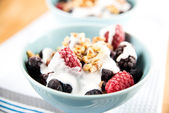 Healthy Paleo Style dessert, Frozen Berries in Coconut Milk with Nuts on Top — Stock Photo