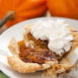 Personal Size Pumpkin Pie with Whip Cream — Stock Photo