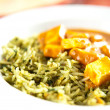 Stock Photo: Paneer TikkMasalwith Spinach and Basmati Rice