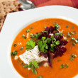 Tomato Soup with Sour Cream — Stok fotoğraf