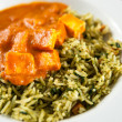 Paneer Tikka Masala with Spinach and Basmati Rice — Stock Photo