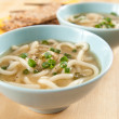 Healthy Miso Soup with Noodles and Chopped Green Onions — Stock Photo