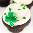 Chocolate Cupcakes with Green Icing, Sprinkles, and Clover — Stock Photo #29077397