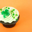 Chocolate Cupcakes with Green Icing, Sprinkles, and Clover — Stock Photo #29077415
