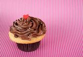 Carino cupcake alla vaniglia con glassa al cioccolato — Foto Stock
