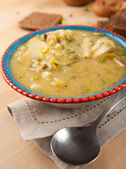 Fresh Potato and Leek Soup — Stock Photo
