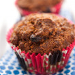 Morning Glory Gluten-free, Dairy-free Muffins with Carrots and Raisins — Stock Photo #29082577