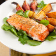 Wild Alaskan Sockeye Salmon Baked with Various Root Vegetables — Stock Photo