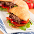 Plate of Three Small Slider Sandwiches with Pulled Beef and Red Bell Peppers — Stock Photo #29083773