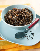 Cooked Wild Rice Cereal — Stock Photo