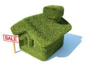 Zelený dům — Stock fotografie