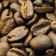 Scatter of coffee beans — Stock Photo