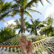 Vacationing in hammock under the palm trees — Stock Photo