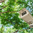CCTV under trees in the park — Stock Photo