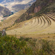 Terraces of Pisac — Stock Photo