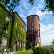Stock Photo: SandomierskTower on Wawel castle