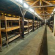 Dormitory in Birkenau concentration camp — Stock Photo