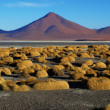 Landscape at Laguna Colorada — Stock Photo