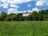 Hruby Rohozec castle — Stock Photo