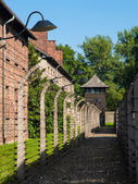 Fence around Auschwitz concentration camp — Stock Photo