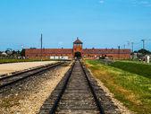 Birkenau toplama kampı — Stok fotoğraf