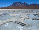 Frozen lagoon — Foto de Stock