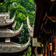 Typical chinese roofs — ストック写真