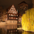 Nuremberg night scene at river — Stock fotografie #29704717