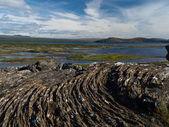 Thingvellir Lakes — Stock Photo