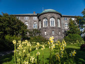 Icelandic parliament in Reykjavik — Stock Photo