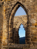 Gothic windows — Stock Photo