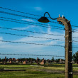 Stock Photo: Barb wires and lamp in Birkenau