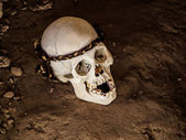 Skull in Chauchilla archeological site — Stock Photo