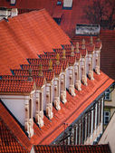 Old red roof with dormer-windows — Stock Photo