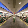 Reportage: railways's italitrain and Stations. SantMariNovellin Florence. — Stock Photo #29164627