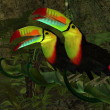 Toucan Jungle — Stock Photo