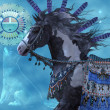 Year of the Wolf Horse — Stock Photo