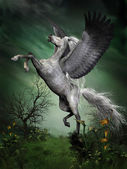 Dapple Grey Pegasus — Stockfoto