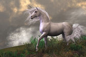 White Unicorn Stallion — Stock Photo