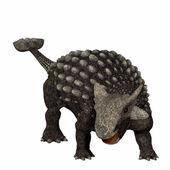 Ankylosaurus — Stock Photo