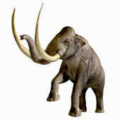 Columbian Mammoth — Stock Photo