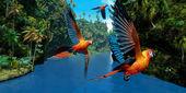 Kubańskie czerwona ara — Zdjęcie stockowe