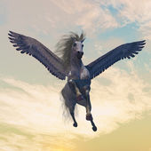 Pegasus Male — Stock Photo