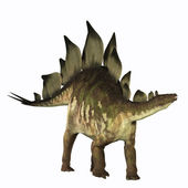 Stegosaurus Profile — Stock Photo