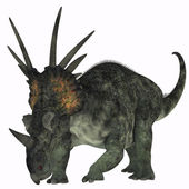 Styracosaurus on White — Stock Photo