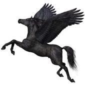 Black Pegasus Profile — Stock Photo