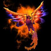 Phoenix Bird — Stock Photo