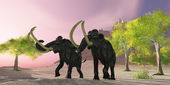 Woolly Mammoth Morning — Stock Photo